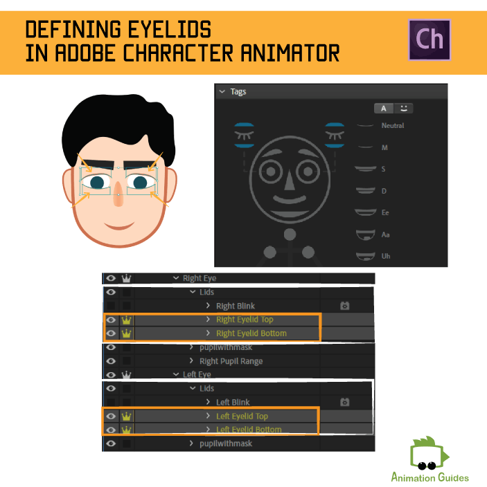 defining eyelids in adobe character animator
